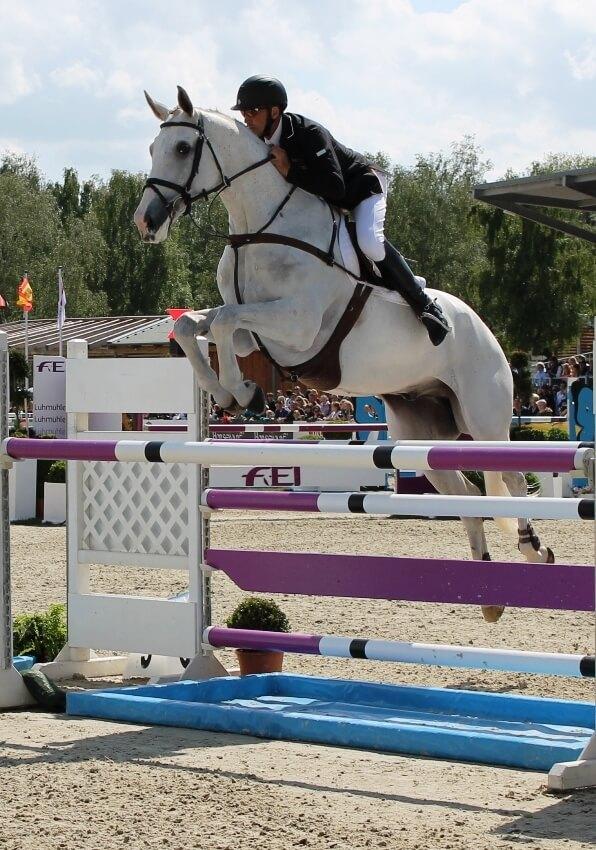 Andrew Nicholson mit seinem Pferd Mr. Cruise Control beim CCI4* Luhmühlen 2013