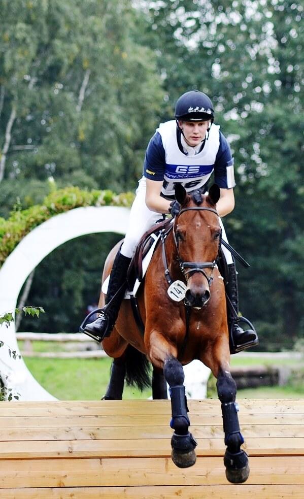 Christoffer Forsberg und Lennos S, Sieger der CIC*-Prüfung 29.10.2012 - Foto von RFV Vögelsen-Mechtersen - Tanja Wedemann - Pressewartin