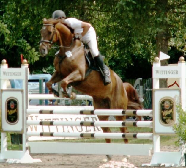 Gerold Gögele auf seinem Pferd Scarlett 598 bei der Wittinger Kombination beim Reitturnier des RC Hagen am 17.08.2012