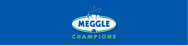 Banner Meggle Champions